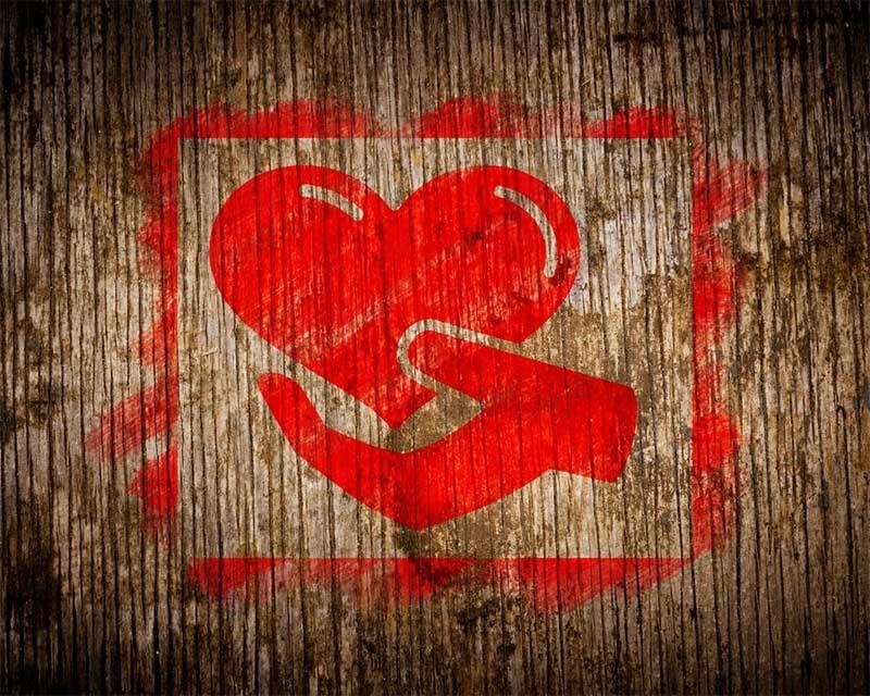 CMS Hub Love