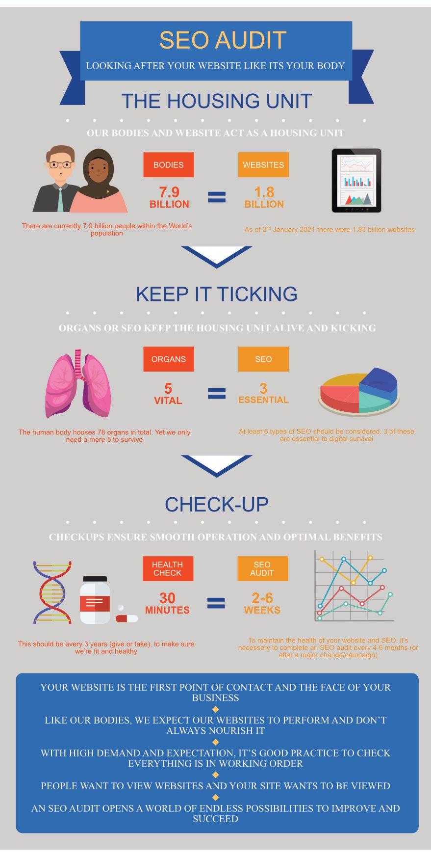 SEO-audit-infographic-like-body